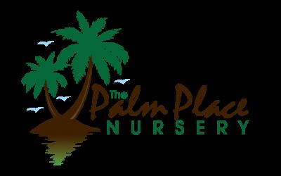 palm-place-nursery-image